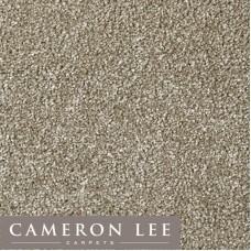 Cam Lee Twist